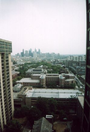 William's view in Philly